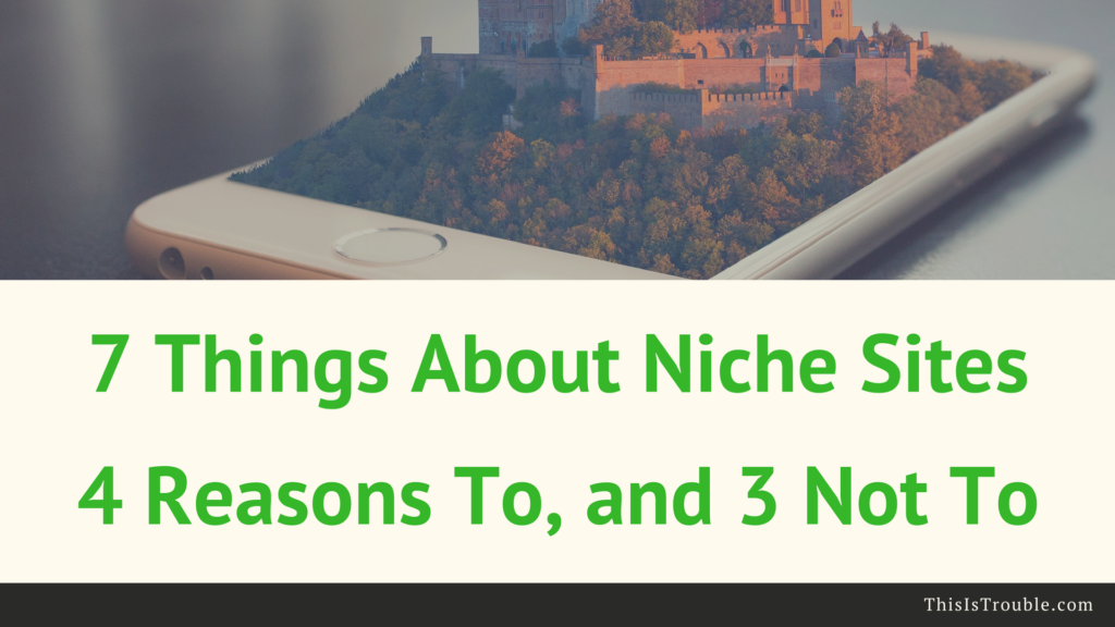 Why You Should Be Starting a Niche Website (7 Reasons Why and Not)